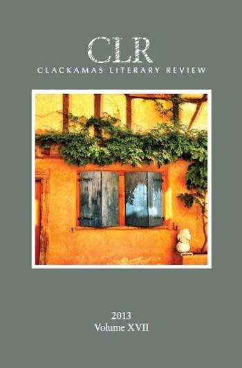 clr 2013 cover