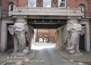Wisniewski Copenhagen 02
