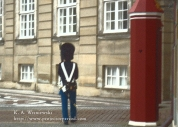 Wisniewski Copenhagen 08